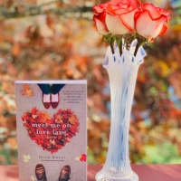 Meet Me on Love Lane by Nina Bocci #bookreview #tarheelreader #thrmeetmeonlovelane @ninabocci @gallerybooks @tlcbooktours #meetmeonlovelane #blogtour #bookgiveaway