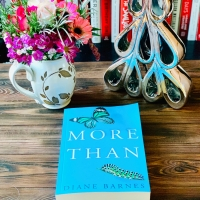 More Than by Diane Barnes #bookreview #tarheelreader #thrmorethan @dianebarnes777 @rapublishing @suzyapbooktours @lizaroyceagency #morethan #blogtour