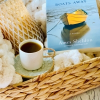 Don't Put the Boats Away by Ames Sheldon #bookreview #tarheelreader #thrdontputtheboatsaway @amessheldonatr @shewritespress @suzyapbooktours #dontputtheboatsaway #blogtour