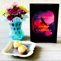 Journey by Andrew Zimmerman #bookreview #tarheelreader #thrjourney @annmarienieves @suzyapbooktours #journeybook #blogtour