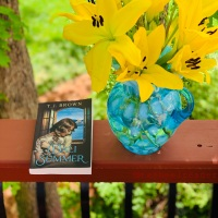 Dali Summer by T.J. Brown #bookreview #tarheelreader #thrdalisummer @teribrownwrites @tlcbooktours #dalisummer #blogtour