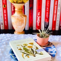 The Distance from Four Points by Margo Orlando Littell #bookreview #tarheelreader #thrthedistancefromfourpoints @margolittell @unopress @tnbbc #thedistancefromfourpoints
