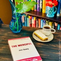 The Merciful by Jon Sealy #bookreview #tarheelreader #thrthemerciful @jonsealy @haywirebooks @csummie #themerciful